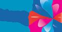 Video Ease Pro Logo